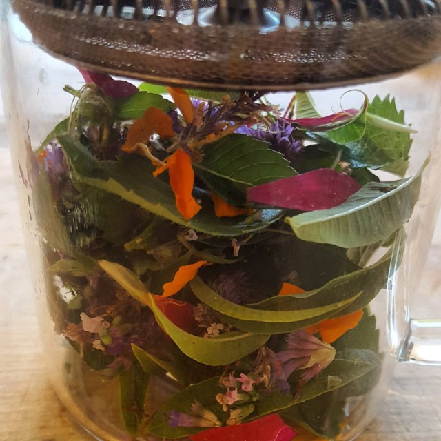 Fresh herb mix from our farm for tisane tea herbhellip